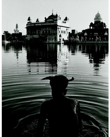 Denis Brihat - Temple d'or d'Amritsar