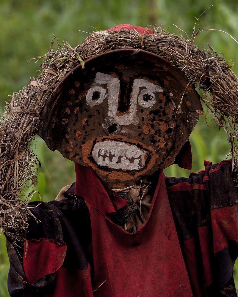 Hans Silvester Scarecrows