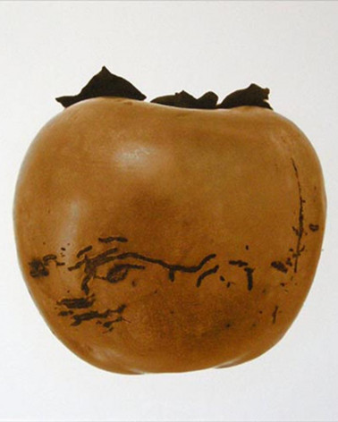 Denis Brihat - Photo Persimmon
