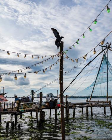Jean-Luc Moreau Deleris - Net Fishing