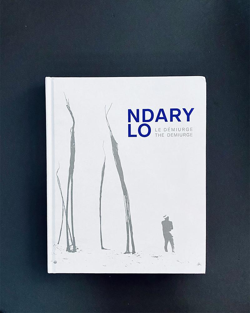 Ndary Lo - Le démiurge, livre