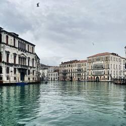 #venezia #canalgrande #calme #retourdevoyage #venice #wwwretourdevoyagecom #timelessdesign #luxurylifestyle #patrimoine #retourdevoyage #heuredepointe